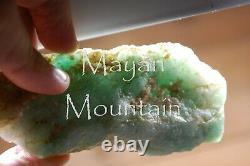 RARE LUNA with IMPERIAL GREEN WHITE JADEITE JADE GUATEMALAN ROUGH MOSS ON SNOW